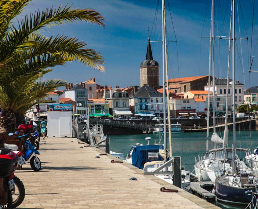 port des sables d'Olonne situé près du camping